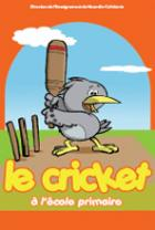 image cricket